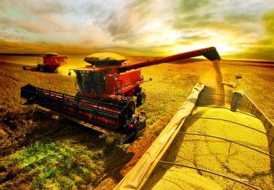 4 dicas que lhe ajudarão a evitar perdas na colheita