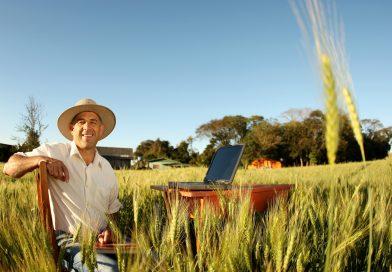 Planilha: Custo de Manejos Agrícolas por Hectare